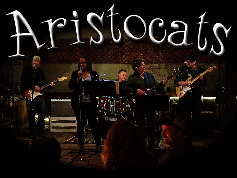 The Aristocats Band - R&B Band - Lafayette, CO