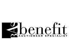 Benefit Auctioneer Specialists - Auctioneer - Orlando, FL
