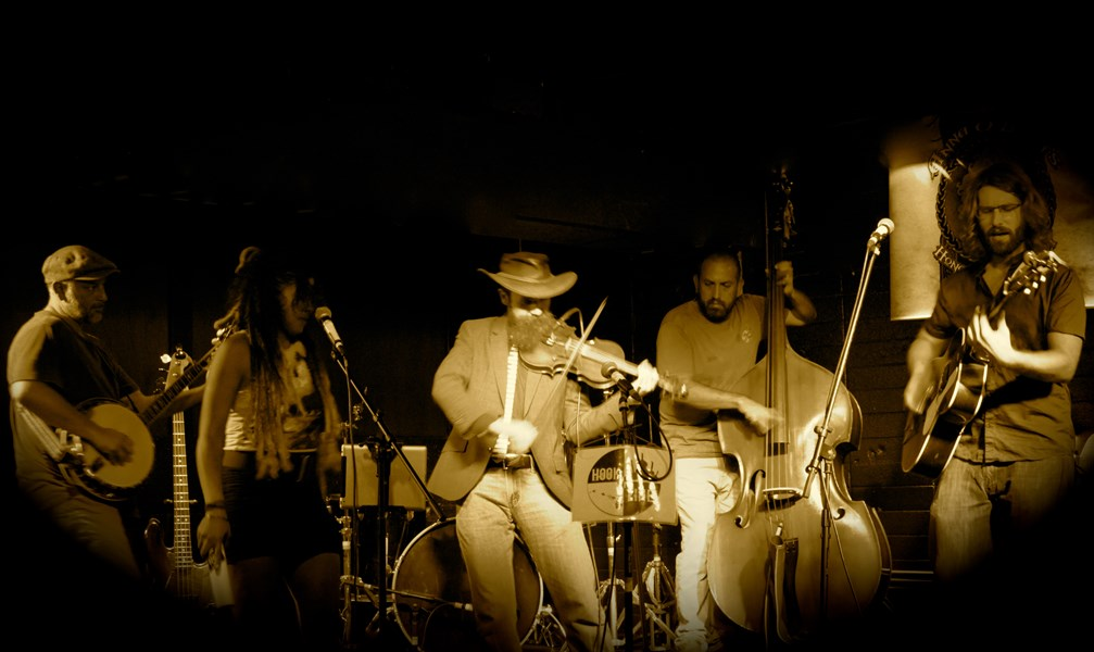 Bluegrass/folk ensembles available.