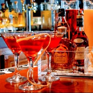 Martinsville City Bartender | Mixerz Bar Service