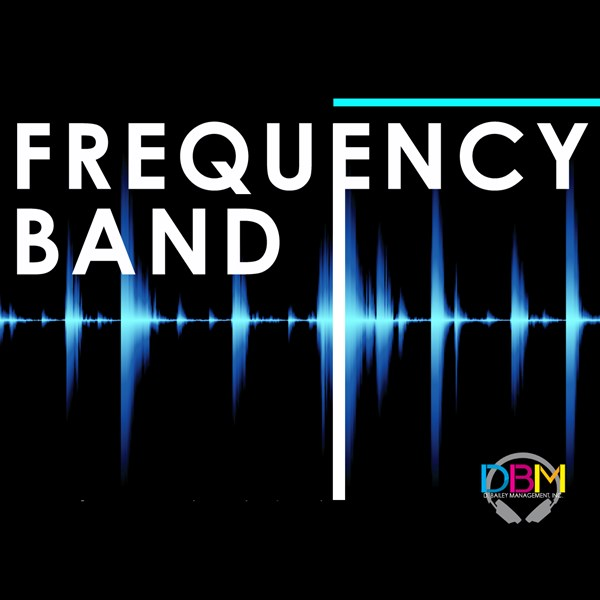Frequency Band - Top 40 Band - Orlando, FL
