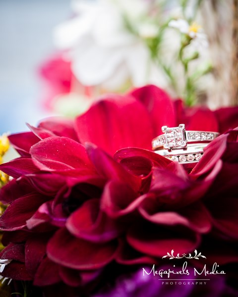 Megapixels Media Wedding and Lifestyle Photography - Photographer - Baltimore, MD