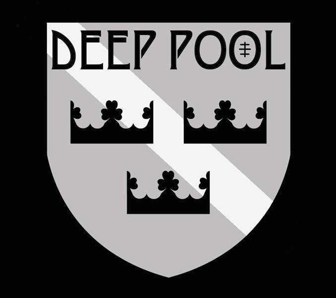 Deep Pool - Folk Band - Madison, WI