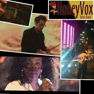 Des Moines Funk Band | Honeyvox