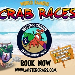 Orlando, FL Reptile Show | Crab Racing by Mister Crabs & Family Entertainment