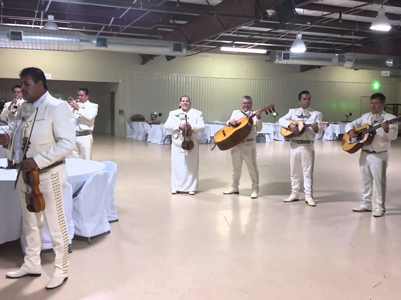 Mariachi Estrellas de Mexico - Mariachi Band - Houston, TX