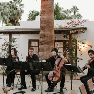 North Hollywood String Quartet | Cattus Quartet