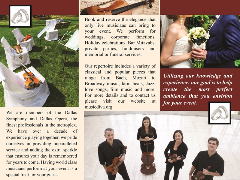 Music diva string quartet and more - Classical Band - Dallas, TX