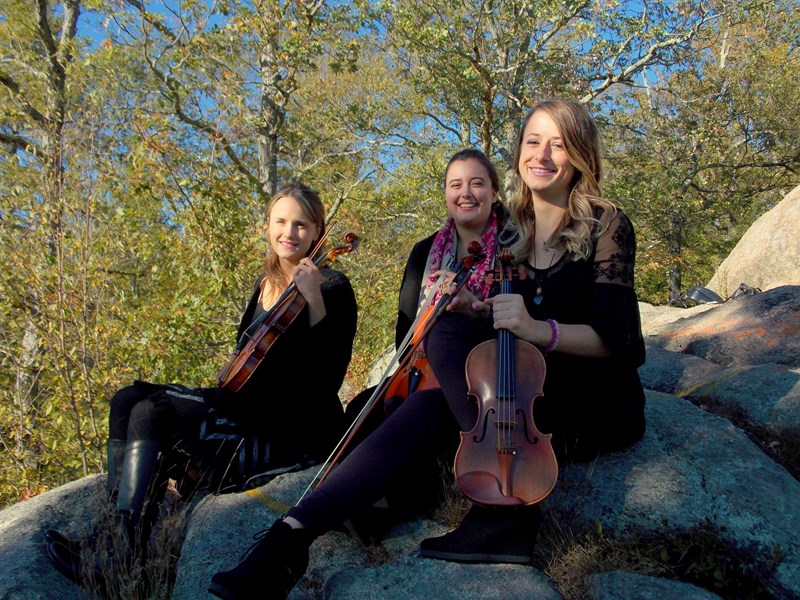 Blackstone Valley String Quartet - Chamber Music Quartet - Northbridge, MA
