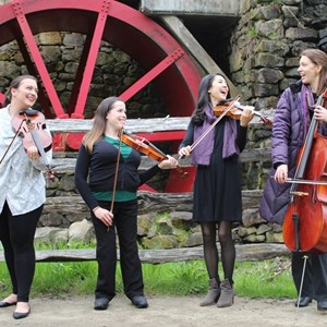 North Grafton, MA String Quartet | Blackstone Valley String Quartet