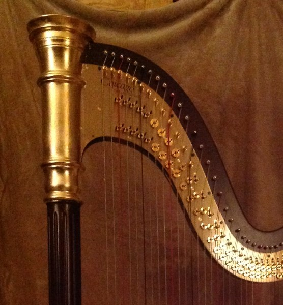 Have Harps, Will Travel - Harpist - Arlington, VA