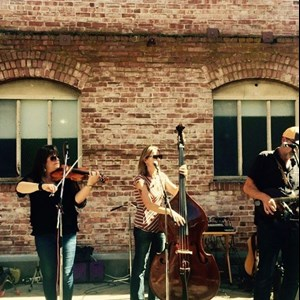 Fairfax, CA Acoustic Band | The Shots String Band