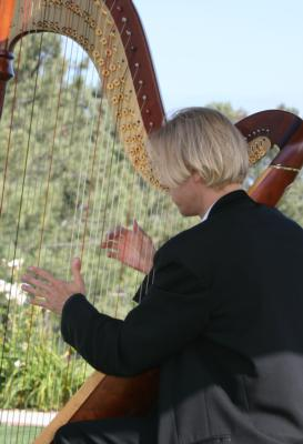 Ted Nichelson, Harpist For Southern California | Los Angeles, CA | Harp | Photo #9