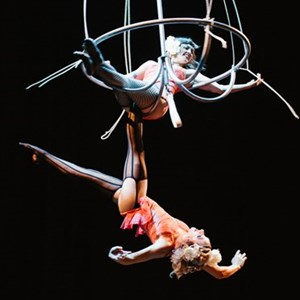 New Orleans, LA Circus Performer | LadyBEAST Productions