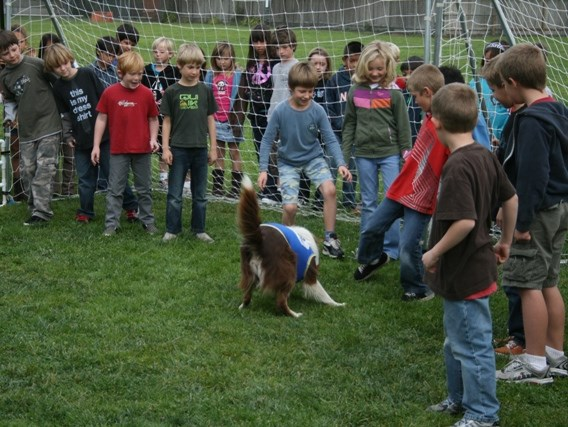 Soccer Dogs - Interactive Game Show Host - Ocala, FL
