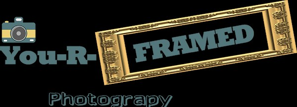 You-R-Framed Photography - Photographer - Los Angeles, CA
