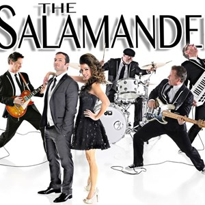 Salt Lake City, UT Cover Band | The Salamanders