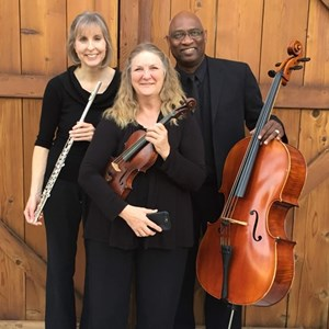 Reedley, CA String Quartet | Christa's Collaborations