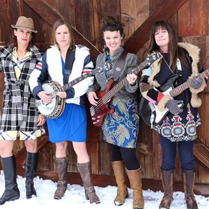 Fort Washakie Cover Band | WillowStar Band
