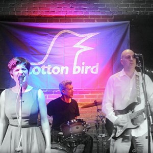 Coffee Cover Band | Cotton Bird