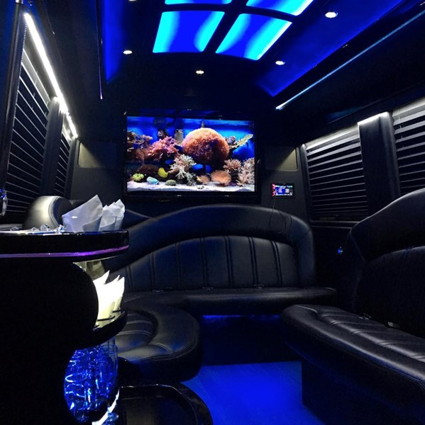 Navistar Limo - Party Bus - Miami, FL