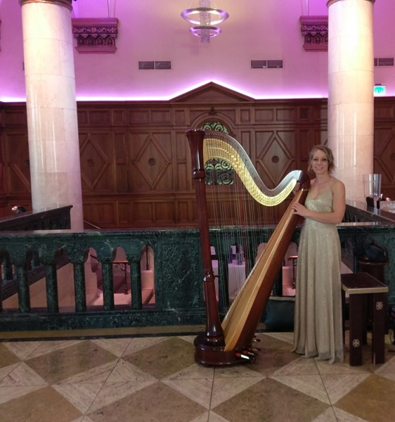Harpist For Any Occasion - Harpist - Chicago, IL