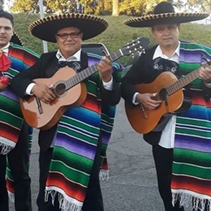 Yolo Acoustic Band | Trio El Mexicano
