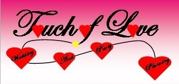 Touch Of Love Wedding And Party Planning - Event DJ - Coal City, IL