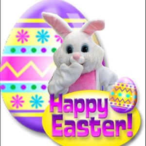 Chicago, IL Santa Claus | Easter Bunny & Holiday Characters-Funtime Services