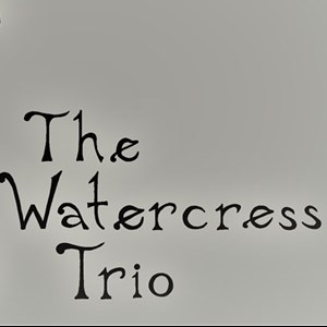 Minneapolis, MN String Quartet | Watercress Strings