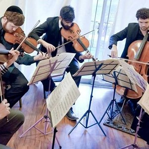 Peach Glen Chamber Music Trio | Baltimore Quartet