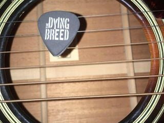 The Dying Breed Band - Americana Band - Naperville, IL