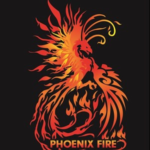 Gainesville, FL Fire Dancer | Phoenix Fire & Performance Art