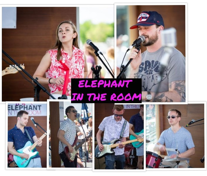 Elephant In The Room - Cover Band - Waltham, MA