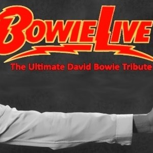 Pittsburgh, PA David Bowie Tribute Act | BowieLIVE - The Ultimate David Bowie Tribute