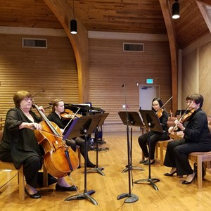 Oak Harbor Chamber Music Quartet | The Magic Strings