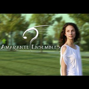 Amarante Ensembles - String Quartet - Chicago, IL