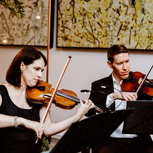Chicago, IL String Quartet | Bridge & Bow Music