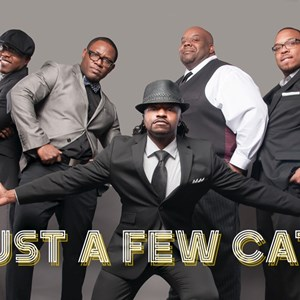 Birmingham, AL Cover Band | Just A Few Cats