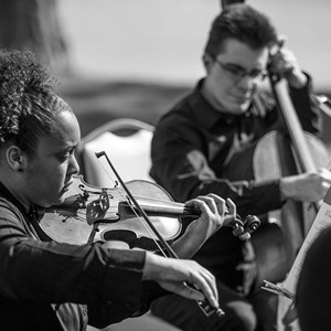 Moseley Chamber Music Trio | Ninja Strings
