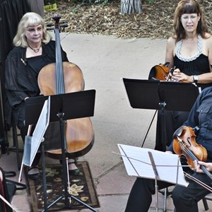 Denver, CO String Quartet | Ptarmigan Classical & Rock String Quartet!