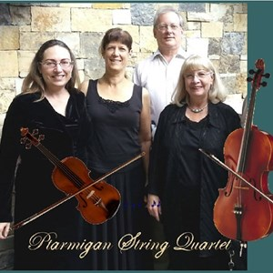 Best String Quartets in Colorado