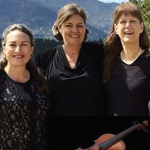 Colorado Chamber Music Trio | Ptarmigan Classical & Rock String Quartet!