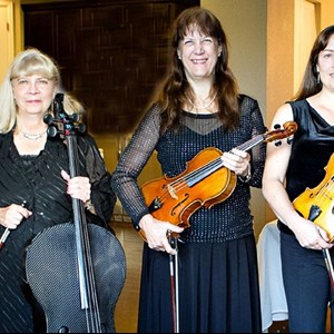 Nunn Chamber Music Trio | Ptarmigan Classical & Rock String Quartet!