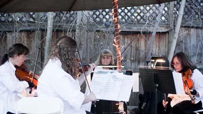 Ptarmigan Classical & Rock String Quartet! | Denver, CO | Classical String Quartet | Photo #20