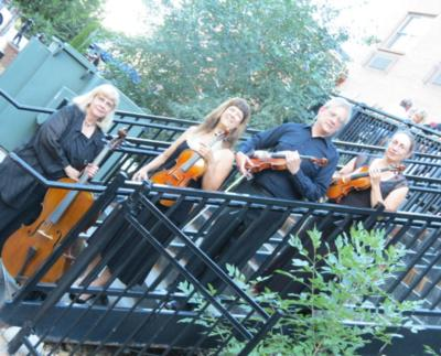 Ptarmigan Classical & Rock String Quartet! | Denver, CO | Classical String Quartet | Photo #1