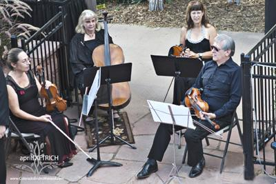 Ptarmigan Classical & Rock String Quartet! | Denver, CO | Classical String Quartet | Photo #15