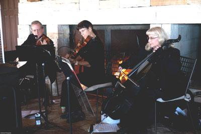 Ptarmigan Classical & Rock String Quartet! | Denver, CO | Classical String Quartet | Photo #10