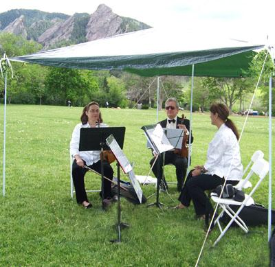 Ptarmigan Classical & Rock String Quartet! | Denver, CO | Classical String Quartet | Photo #7