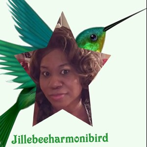 Dickinson Center Gospel Singer | Jillebeeharmonibird
